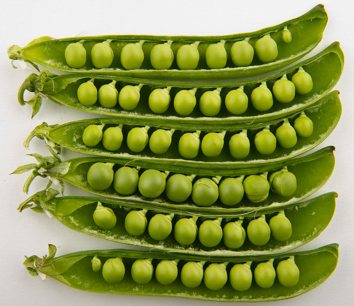 peas in shell